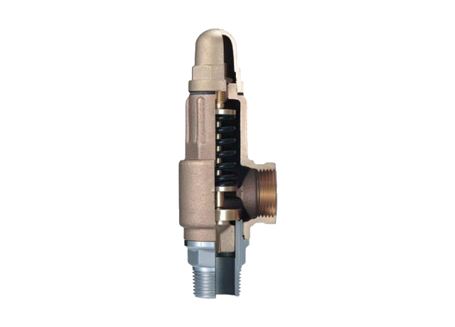 L3S Bronze Safety Valve with SS Seat